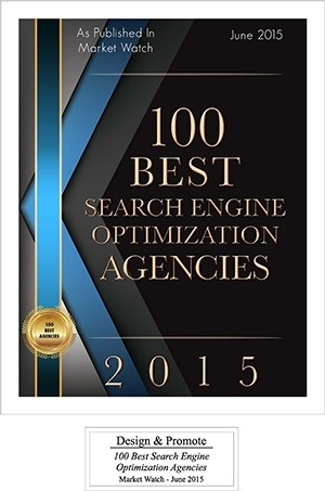 top 100 seo company award pic