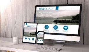 Naperville-Website-Design, web design in Aurora, Naperville Web Design
